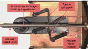 Results of Implementing Torsion Springs Linearly as Elastics