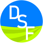 Logo_DSF%20Only_edited.png