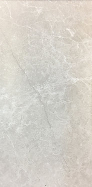 Silver Matt / Polish - 300x600 / 600x600