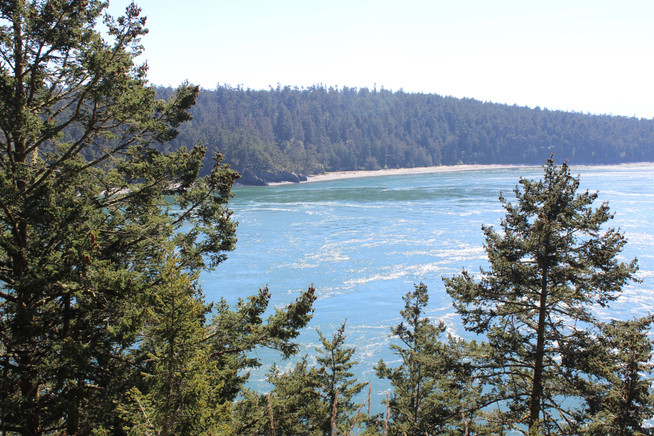 Day Trip to Deception Pass and Penn Cove