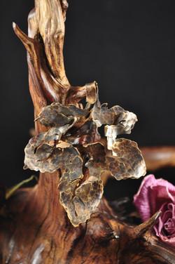 Maple Leaf Piercing (SOLD)