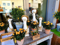 Florist, Blumenladen in Schaffhausen