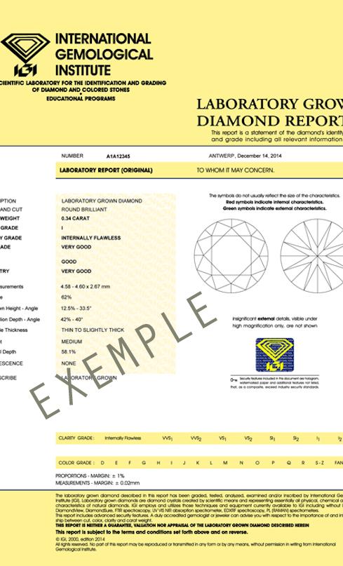 IGI Sample certificate copie.png