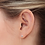 Thumbnail: So by GHAUM, Boucles d'Oreilles Diamant Solitaire Or Blanc 18 carats