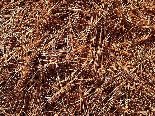 Pine Straw, bale