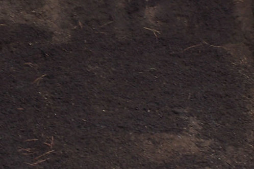 Buck's Planting Mix - per ¾ cubic yard scoop