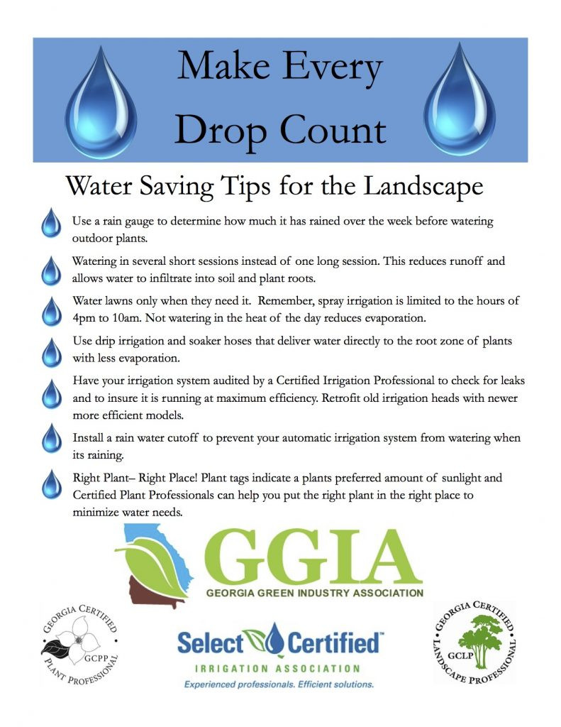 Watering Tips for the Landscape