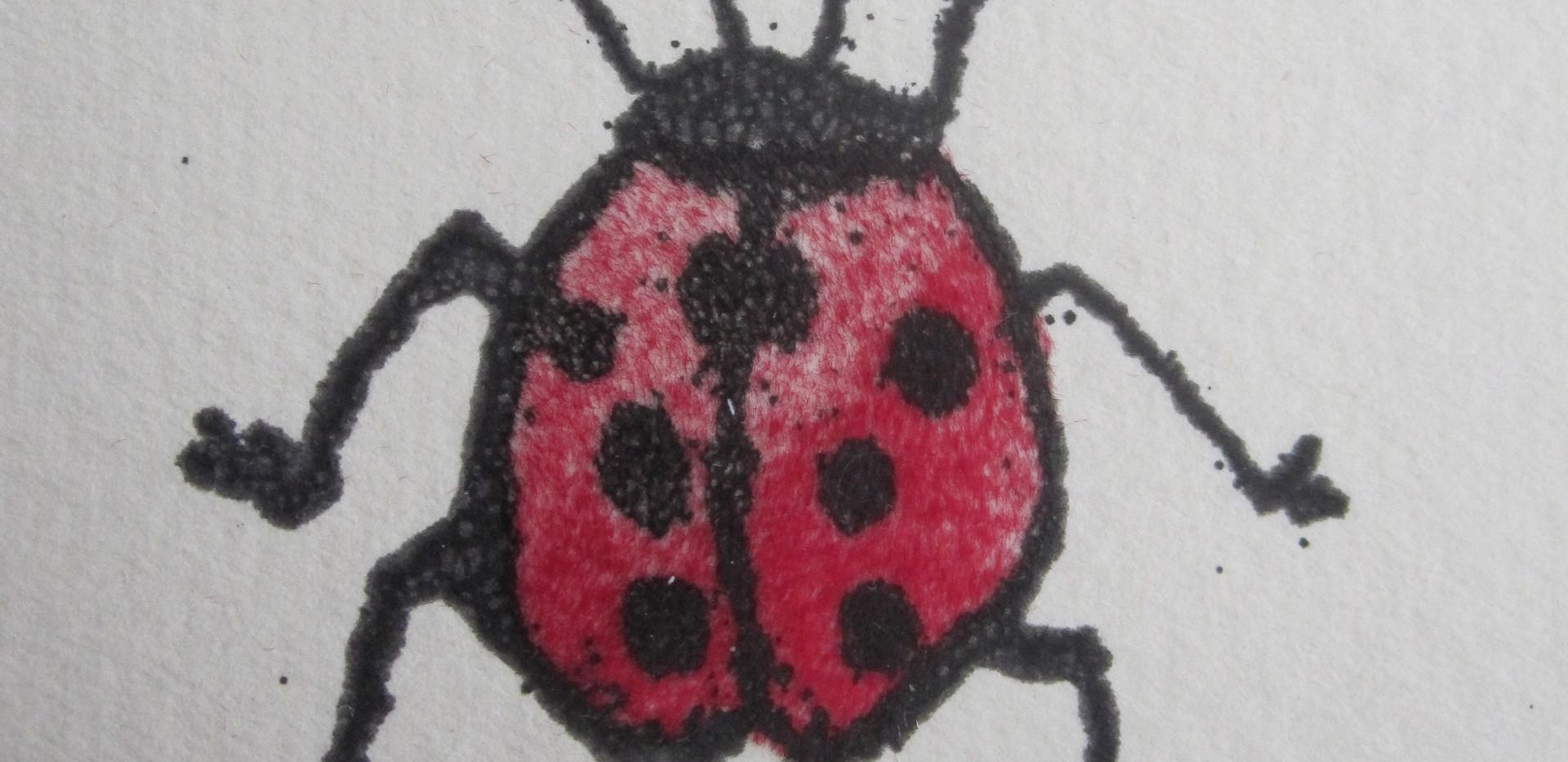 Ladybird, 5x5cm. Sold