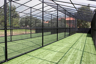 black-chain-link-cricket-cage.jpg