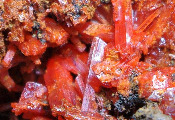 Crocoite - Red Lead Mine, Tasmania