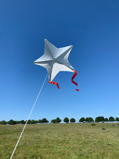 Star kite (10 pack)