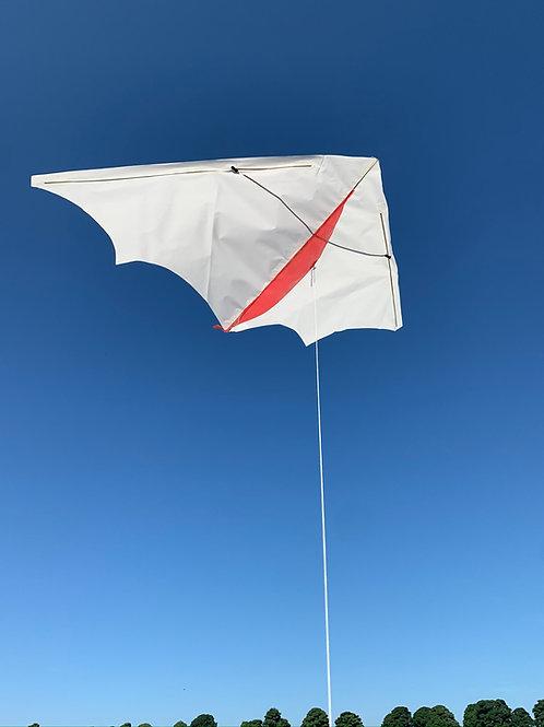 Delta kite (10 pack)