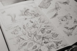 JM Sketchbook Dulverton Studio Numbersev