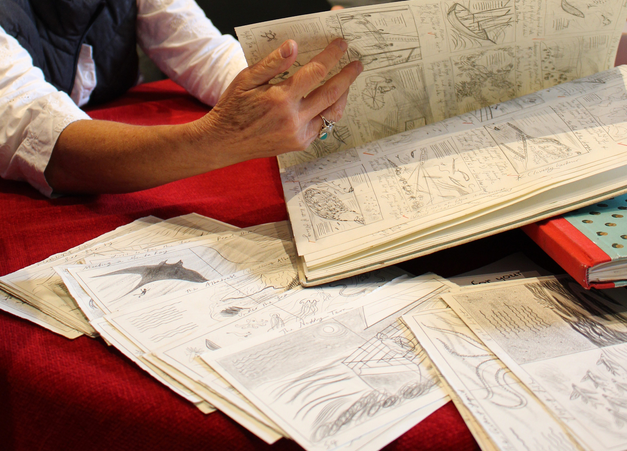 Emily's sketch books