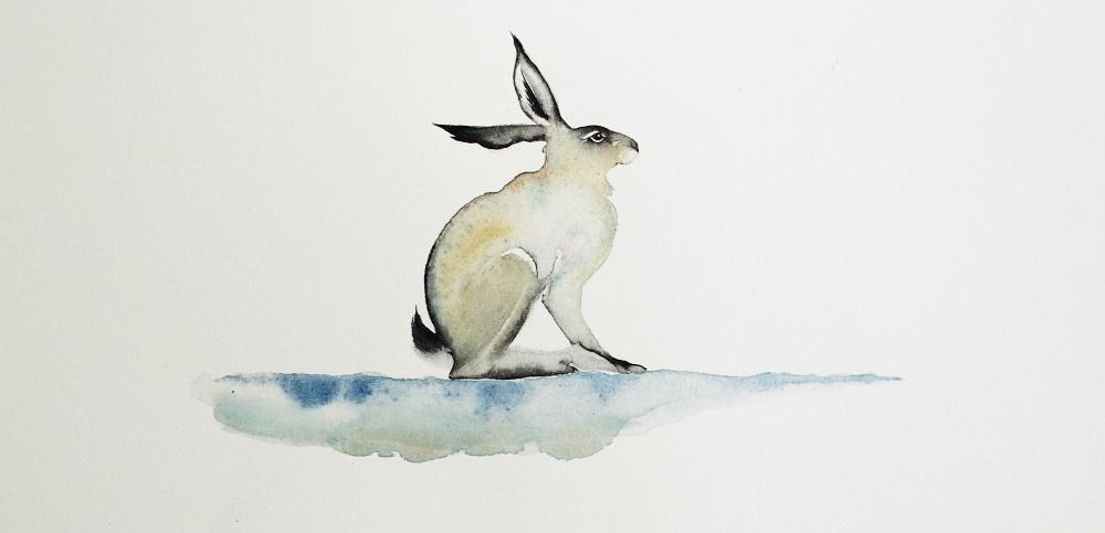 Small Winter Hare