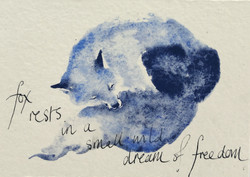 fox rests