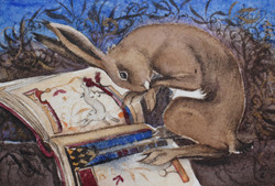 Reading Hare