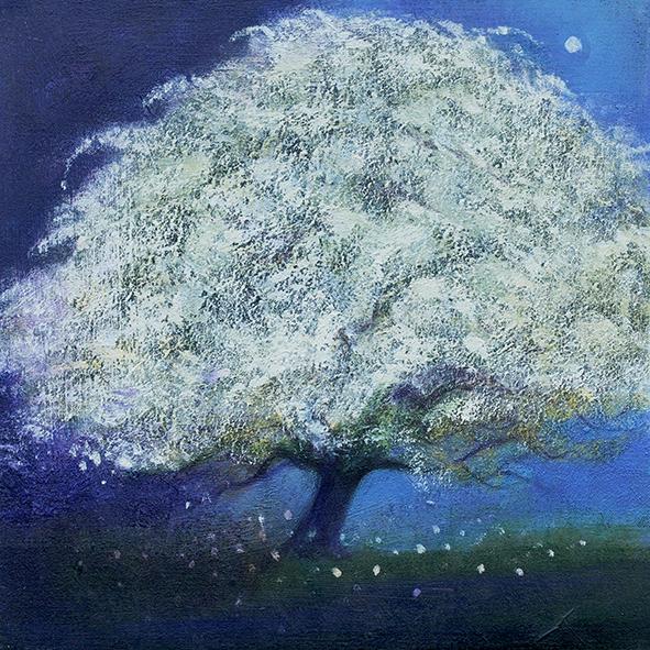 the may tree