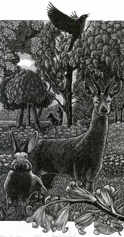 AE Hare & Roe numbersevendulverton