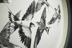 seven swallows II detail