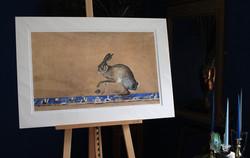 hare's egg