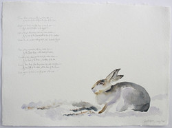 snow hare | the lost spells