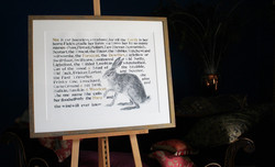 names of the hare