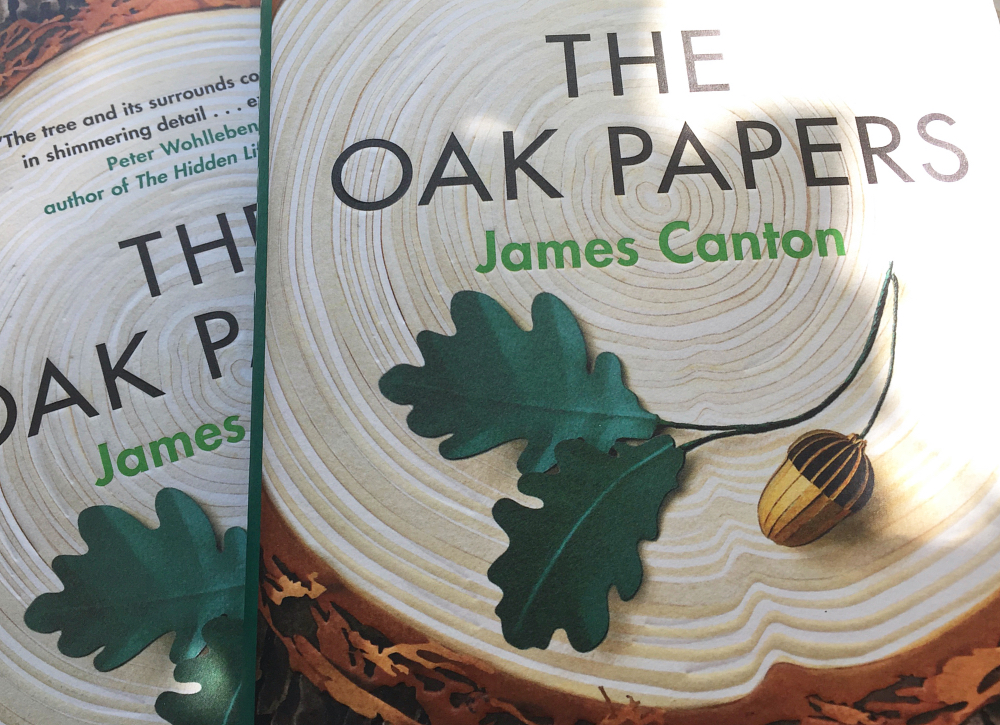 oak papers numberseven dulverton