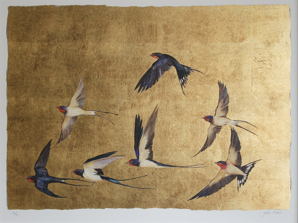golden flight of swallows