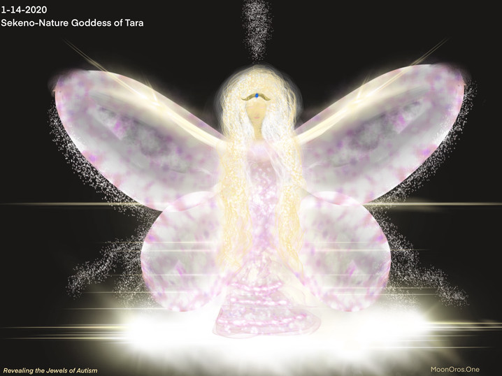 Sekeno_Goddess_Of_Tara.jpg