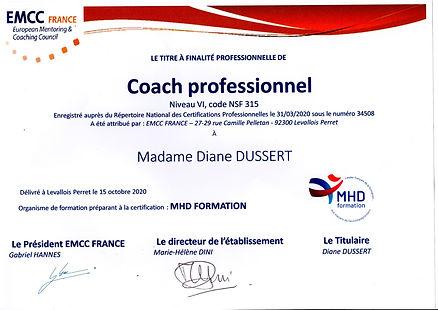 Certification Coach Professionnel Diane Dussert 2019
