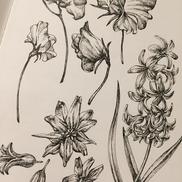 翔泳社 ボタニカル素材集 Flowers & Plants / 2018