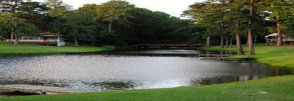 lake_picnic-608x209.jpg