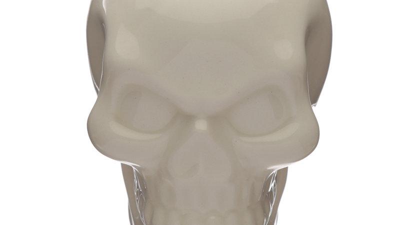 Pot Skull Wall Mountable Planter   (a)