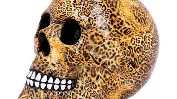 Leopard Resin Skull   (b)