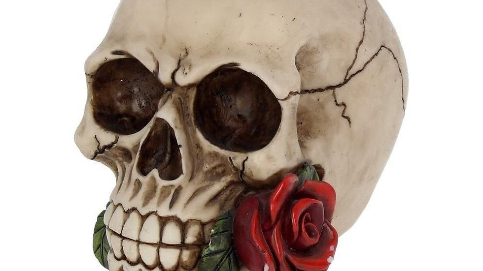 Skull/Rose Resin Skull   (c)