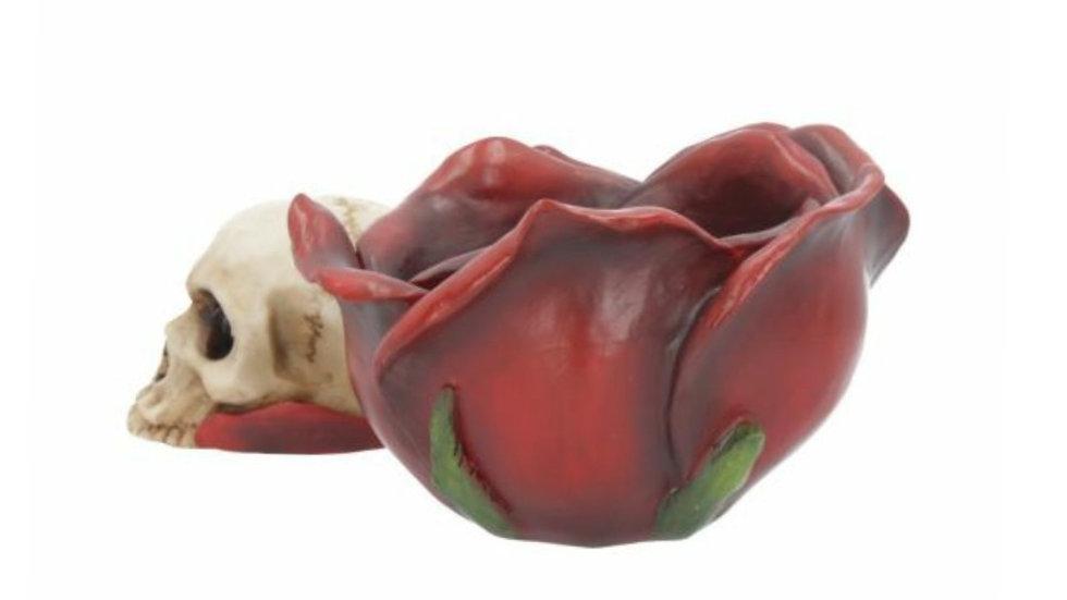 Resin Skull in Rose   (c)