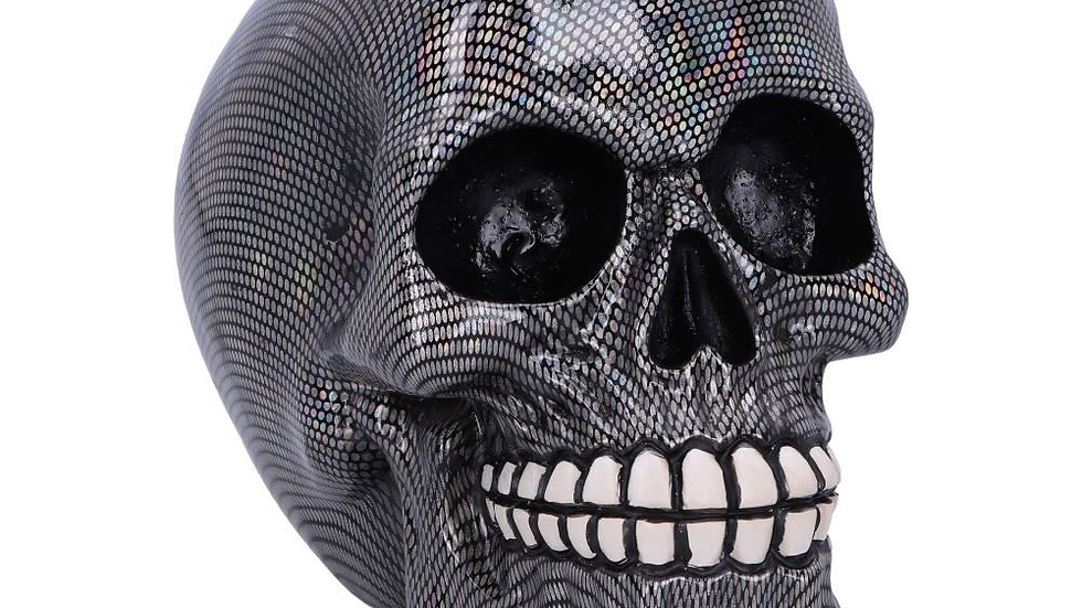Holographic Resin Skull   (b)