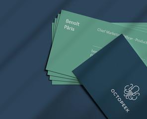Octopeek-carte02 copie.jpg