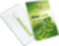 Ecopayz Prepaid ATM Card.png
