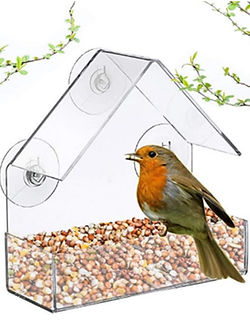 window bird feeder.jpg