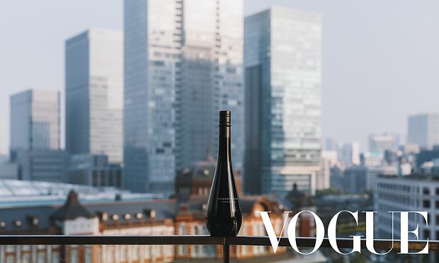 Vogue Article.png