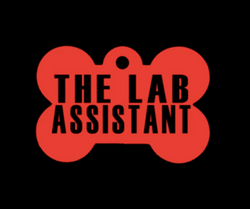 The Lab Assistant (Released 11/28/16