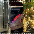 00D12299-6A86-4BD1-9D02-BD6010E01A62.jpe