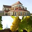 L'Abbaye de Pontigny et Dégustations de vins