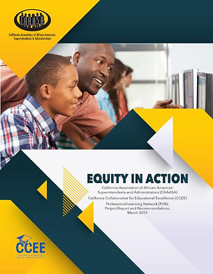 Equity in Action report cover.jpg