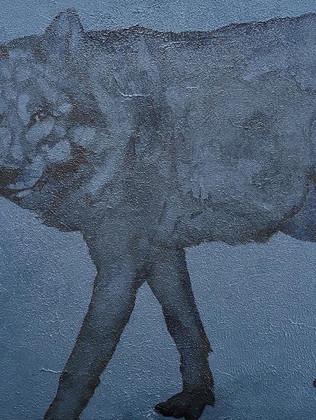 Le loup, 65x50x2cm