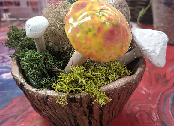 Medium Mushroom Garden