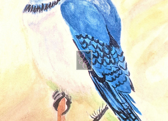 Blue Jay in Spring Watercolor