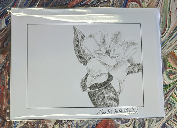 Gardenia Sketch Print